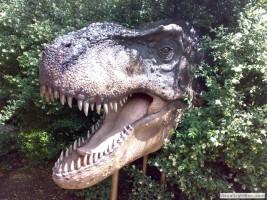 2010-06-18 Dinopark Plzeň